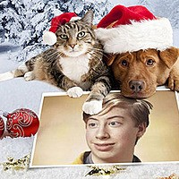 Photo effect - Dog and cat wish a Merry Christmas