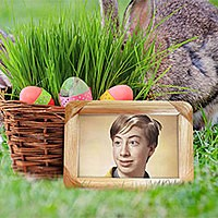 Photo effect - Easter basket with colored eggs