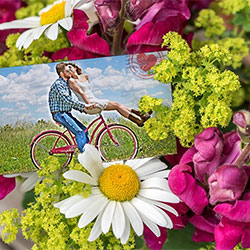 Effect - Greeting card with flowers