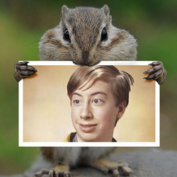 Photo effect - Rodent eating your photo