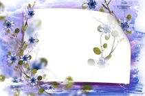 Photo frame - Sky Forget-Me-Not Flowers