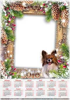 Calendar 2018. Lights and a dog