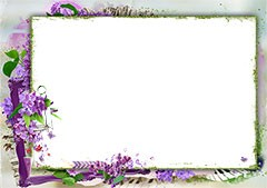 Photo frame surrounded with lilac flowers