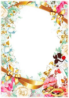 Wedding frame with two rings and newlyweds
