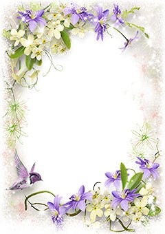 Spring bird and violet flowers