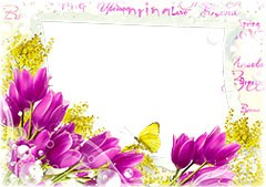 Spring violet tulips and yellow butterfly