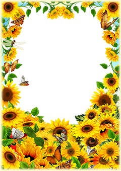 Sunflowers and butterflies