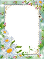 Mini Photo frame - Daisies