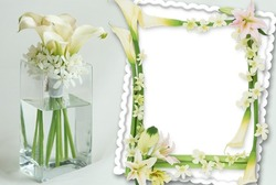 Mini Photo frame - Delicate flowers