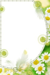 Mini Photo frame - Green camomiles