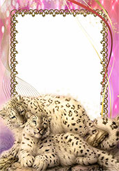 Mini Photo frame - Animals. Photo frame with snow leopards