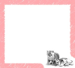 Mini Photo frame - Pink cats