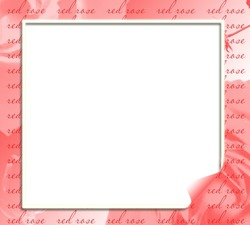 Mini Photo frame - Red rose