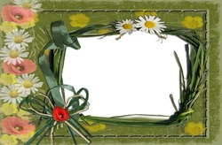 Mini Photo frame - Wild camomiles
