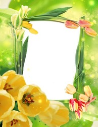 Mini Photo frame - Yellow tulips