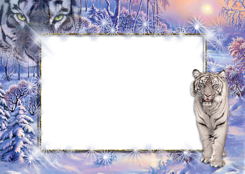 Photo frames. White tiger magic