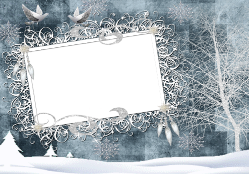 Photo frame - Beauty of winter forest