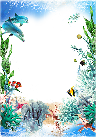 Photo frame - Beauty of coral reef