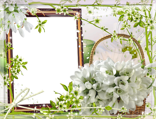 Photo frame - Bunch of snowdrops