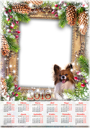 Marco de fotos - Calendar 2018. Lights and a dog