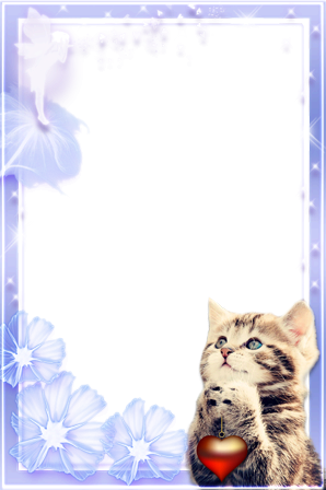 Photo frame - Cute romantic kitten