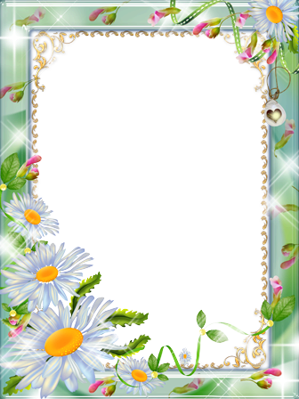 Photo frame - Daisies