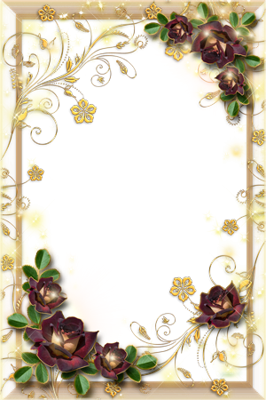 Photo frame - Gold and roses