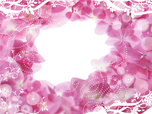 Photo frame - Hole in pink flowers