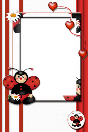 Photo frame - Ladybird with camomile