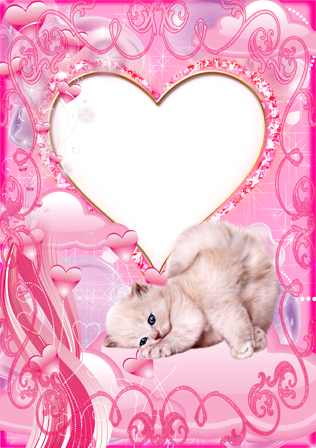 Photo frame - Lovely kitten