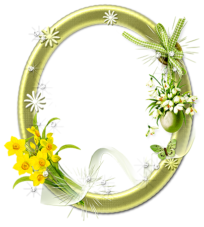 Marco de fotos - Oval floral frame with yellow  narcissists
