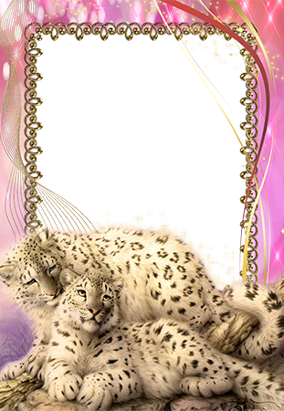 Photo frame - Animals. Photo frame with snow leopards