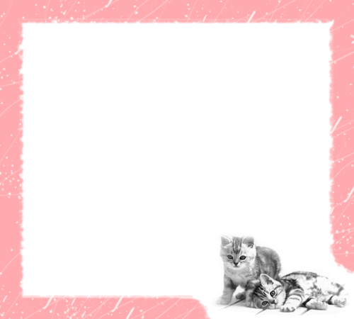 Photo frame - Pink cats