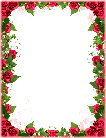 Cadre photo - Red roses border