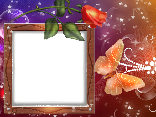 Photo frame - Rose and butterfly