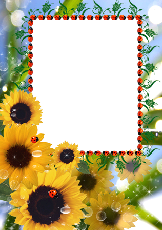 Photo frame - Sunflowers for you