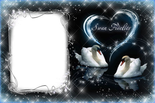 Photo frame - Swan fidelity