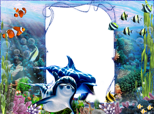 Photo frame - Underwater world