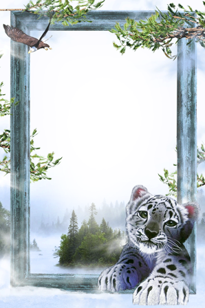 Photo frame - White tiger