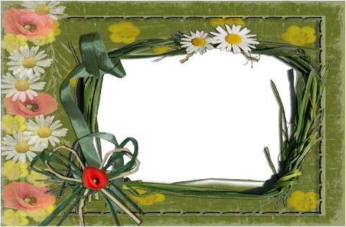 Photo frame - Wild camomiles