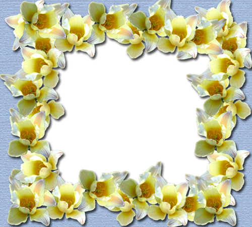 Photo frame - Yellow flowers border